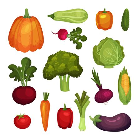 Fresh Vegetables Isolated on White Background Vector Set. Agricultural Crops for Vegetarian Dishes Concept