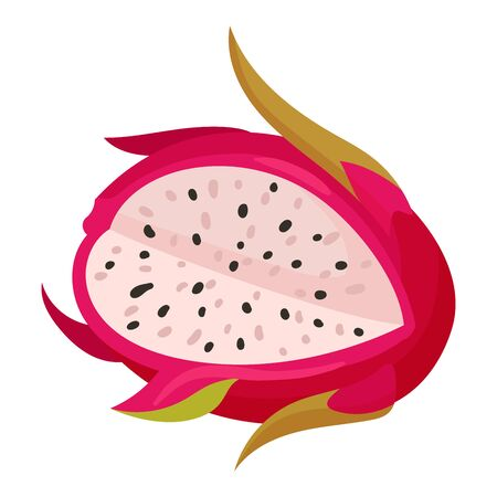 Pitaya or Dragon Fruit Covered with Leathery Leafy Skin with Cut Section Vector Illustration