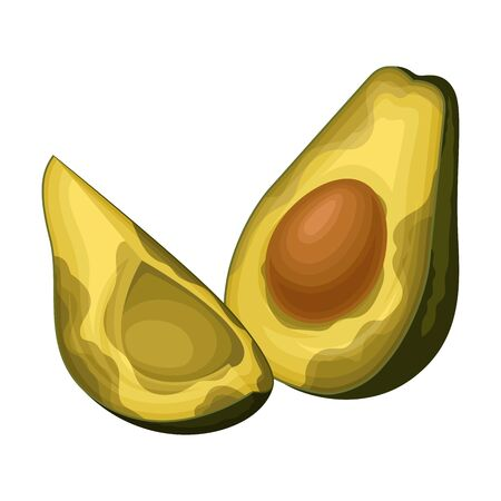 Spoiled and Rotten Avocado Fruit with Skin Covered with Stinky Rot Vector Illustration 일러스트