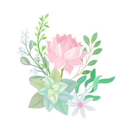 Succulent Echeveria Floral Arrangement Vector Illustration. Natural Cactus Bouquet