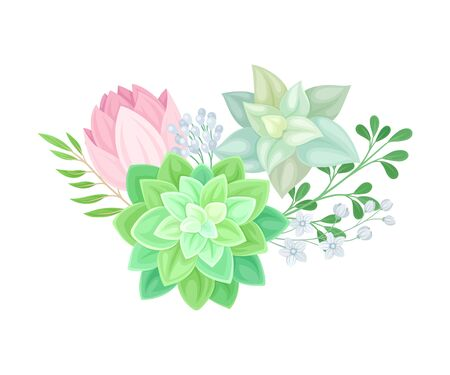 Floral Composition of Tender Colorful Succulent Plant Arranged with Botanical Twigs Vector Illustration