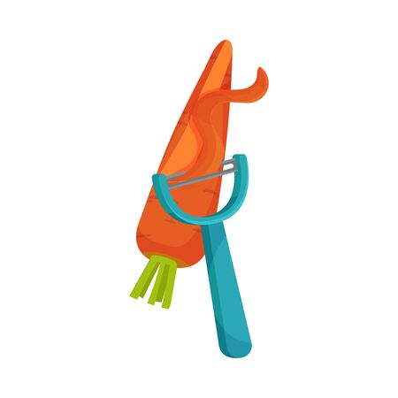 Process of Peeling Carrot with Paring Knife Vector Illustration 일러스트
