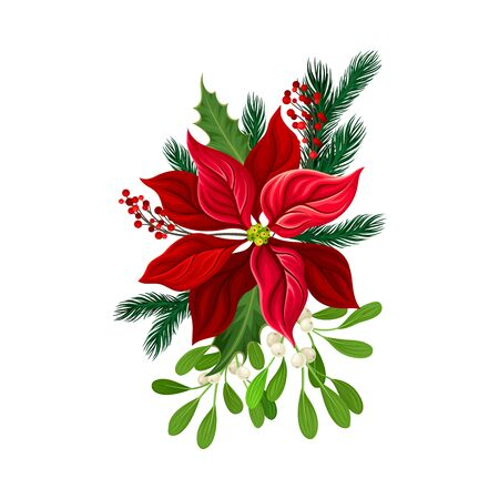 Euphorbia Red Flower Arranged with Fir Tree Twigs and Red Berries Branch Vector Illustration Ilustración de vector