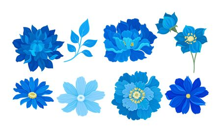 Blue Full-blown Flowers and Leaves Decorative Elements Vector Set