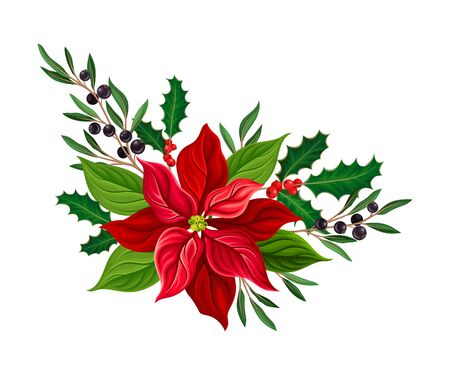 Christmas Flower Composition with Mistletoe Twigs and Blackcurrant Branch Vector Illustration Illustration