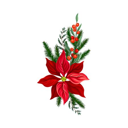 Holiday Floral Composition Arranged From Red Christmas Flower and Fir Tree Twigs Vector Illustration