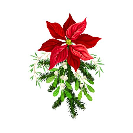 Christmas Flower Composition with Fir Tree Twig and Mistletoe Branch Vector Illustration
