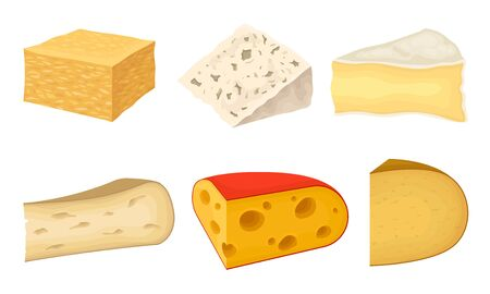 Cheese Types with Blue Cheese and Swiss Cheese Slabs Vector Set Ilustracja