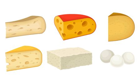 Cheese Types with Soft Cheese and Swiss Cheese Slabs Vector Set
