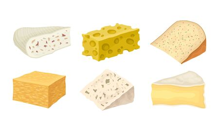 Cheese Types with Blue Cheese and Swiss Cheese Slabs Vector Set