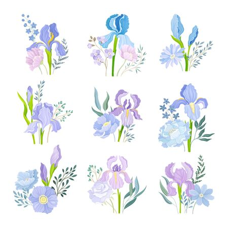 Floral Compositions with Purple Iris Flowers on Green Erect Stem Vector Set. Floristic Arrangement for Decoration Concept