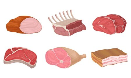 Meat Cuts in Assortment with Rib Roast and Bacon Slab Vector Set