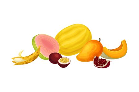 Mixed Exotic Fruits Arrangement or Composition Vector Illustration. Bright Ripe and Fresh Snack Rich of Vitamins for Fruitarianism Concept  イラスト・ベクター素材