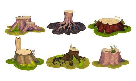 Frisch geschnittene Stubs und moosbedeckte Stumps stehen auf Green Patch Vector Set