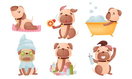 Cartoon Puppy Grooming Himself Taking Bath and Sitting with Facial Mask Vector Set Illustration