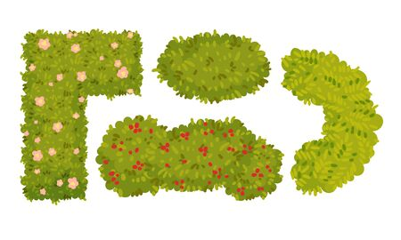 Shaped Green Bushes Planted in Parks and Gardens Above View Vector Set. Botanical Shrubs and Hedges. Topiary Art Concept