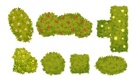 Shaped Green Bushes Planted in Parks and Gardens Above View Vector Set Ilustração