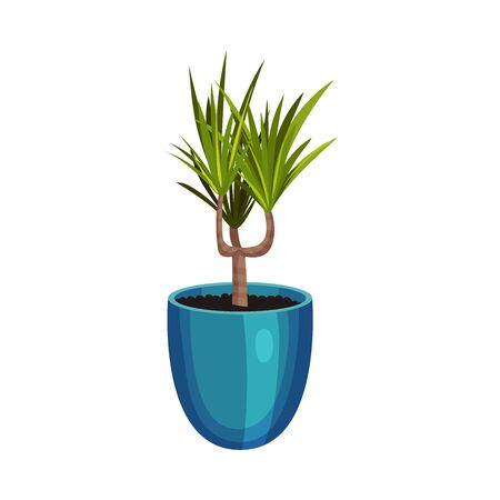 House Plant Growing in Pot Isolated on White Background Vector Illustration. Home Interior Decor and Botanical Decoration Concept