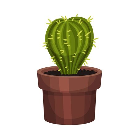 House Plant with Sharp Spikes Growing in Pot Vector Illustration. Home Interior Decor and Botanical Decoration Concept