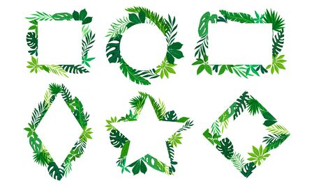 Tropical Leaves and Branches in Shaped Frames and Borders Vector Set Ilustração