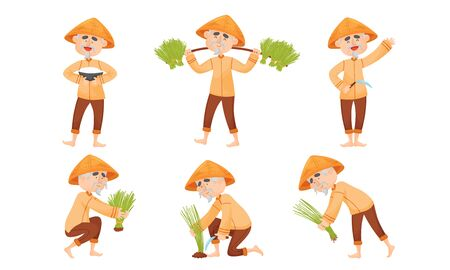 Chinese Farmer in Conical Hat Planting and Gathering Rice Vector Set