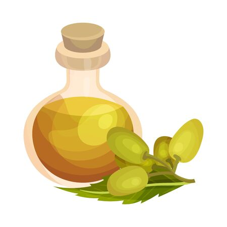 Essential Oil of Neem Plant Poured in Corked Glass Bottle with Leaf and Fruit Rested Nearby Vector Illustration