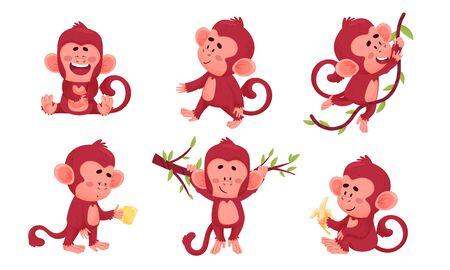 Funny Cartoon Monkey Swinging on Liana and Laughing Vector Set