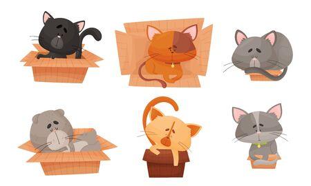 Cute Cat Sitting and Sleeping in Carton Box Vector Set