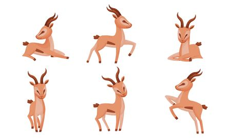 Impala Animal with Horns in Different Poses Vector Set