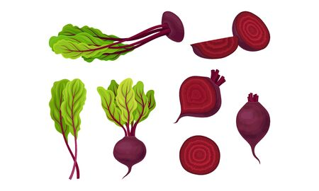 Whole and Cut Dark Red Beetroot or Chard with Top Leaves Vector Set