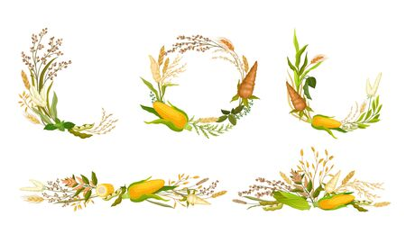 Agricultural Composition with Different Spikelets and Crops Like Corn and Wheatear Vector Set. Decorative Wreath and Arrangments of Farm Crops Vector Illustration