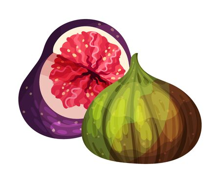 Fig Fruit with Cutout Section Showing Bright Flesh with Small Seeds Inside Vector Illustration. Ripe Sweet Organic Food for Jam Preparation and Raw Vitaminic Eating