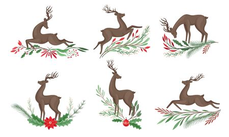 Brown Deer with Antlers and Winter Twigs and Flower Composition Beneath It Vector Set. Horned Reindeer Animal as Holiday Simbol