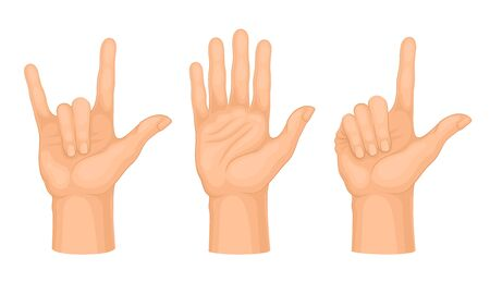 Hands Making Different Gestures and Signs Isolated on White Background Vector Set