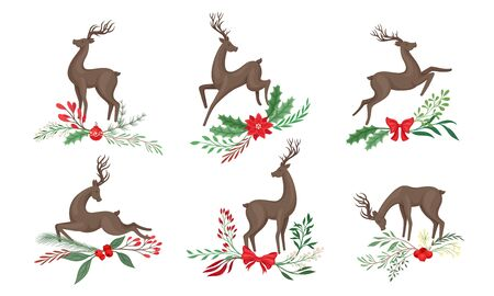 Brown Deer with Antlers and Winter Twigs and Flower Composition Beneath It Vector Set Illustration