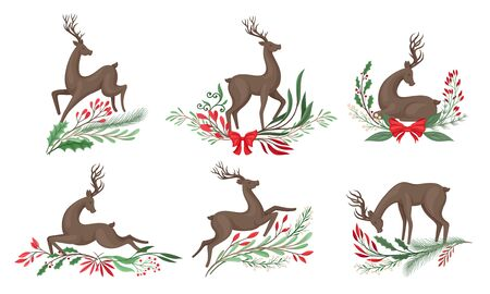 Brown Deer with Antlers and Winter Twigs and Flower Composition Beneath It Vector Set Иллюстрация