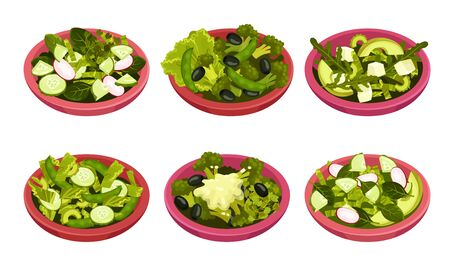 Bowl of Salad with Juicy Greenery and Oil Dressing Vector Set
