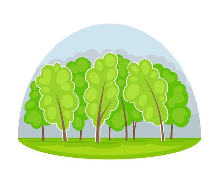 Wood and Forest Area as Natural Resource Vector Illustration Çizim