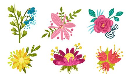 Fancy Shaped Floral Compositions with Green Branches and Flower Buds Vector Set
