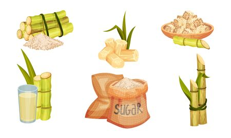 Sugar Cane Unbranched Stems with Leaves and Superfood like Brown Granulated Sugar Vector Set Vecteurs