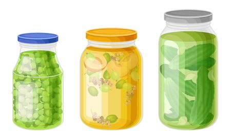 Glass Jars with Preserved Vegetables and Stewed Fruit Vector Set