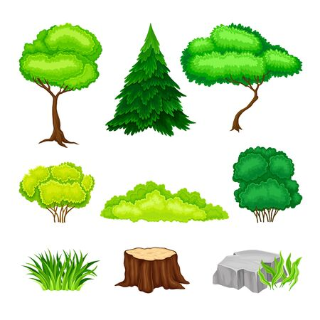 Green Trees, Bushes and Stumps as Forest Elements Vector Set Banque d'images - 148783828