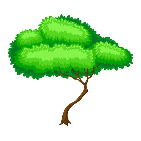Green Tree with Brown Trunk and Leafy Crown as Forest Element Vector Illustration Ilustrace