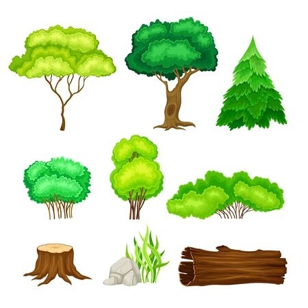Green Trees, Bushes and Stumps as Forest Elements Vector Set Illustration