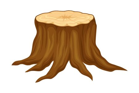 Brown Fresh Cut Stump or Stub as Forest Element Vector Illustration Banque d'images - 148790176
