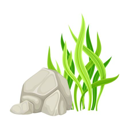 Grey Stone or Cobble with Green Grass Blades as Forest Element Vector Illustration