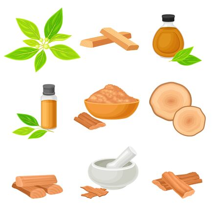 Sandalwood Tree Branch and Fragrant Powder in Bowl Vector Set