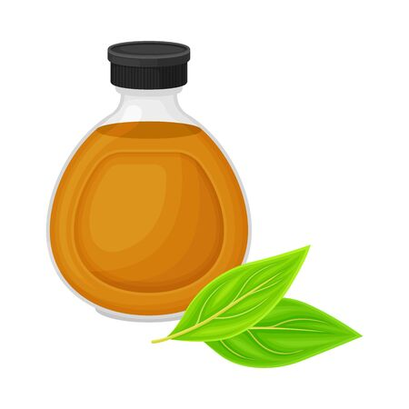 Glass Bottle with Essential Oil of Sandalwood and Leafy Tree Branch Rested Nearby Vector Illustration Иллюстрация