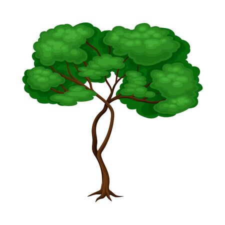 Tree with Exuberant Green Foliage and Trunk Vector Illustration Ilustração