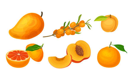 Fruits and Berries with Ripe Apricot and Mango Vector Set
